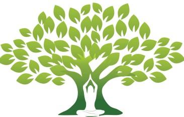 Yoga Sustentabilidade